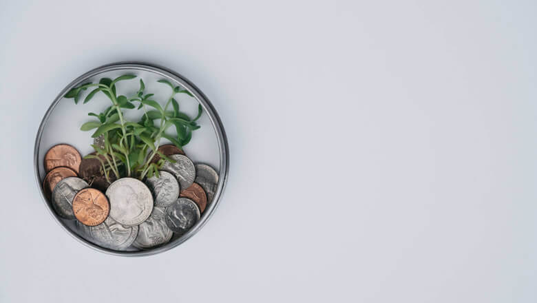 coins with a plant