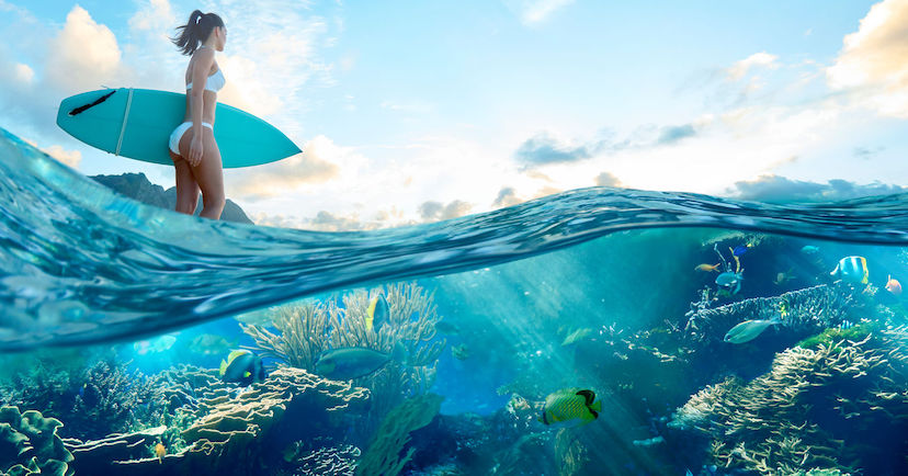 surfer and view of underwater reef