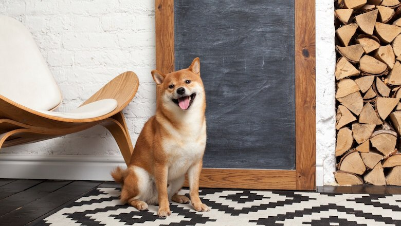 How Many Dogecoins Are There in Circulation?