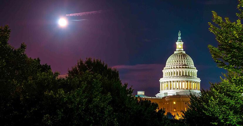 Capitol in Washington, DC