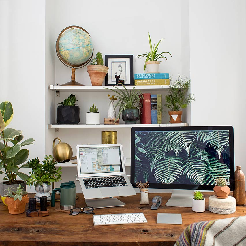 WorkspaceGoals_PlantLover