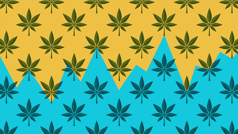 Cannabis Investing 101
