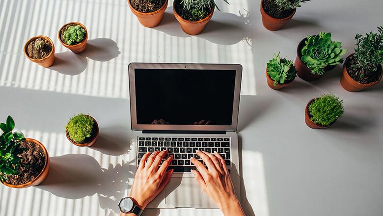Building An Investment Portfolio